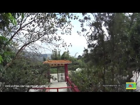 【Hong Kong Hiking】上花山上引水道 Sheung Fa Shan Watercatch Channel (Edited)