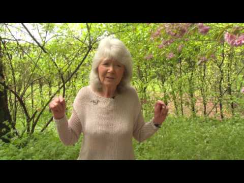 Jilly Cooper tells us about her book Mount. WHSmith Exclusive!