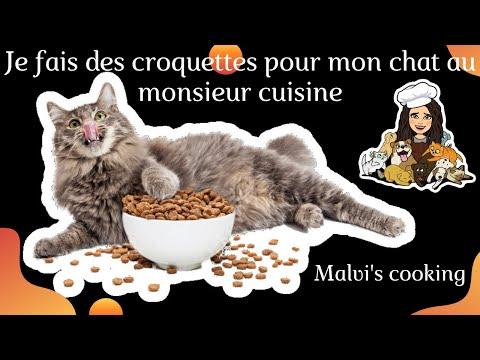 je-fais-à-manger-pour-mes-chats-au-monsieur-cuisine🐈