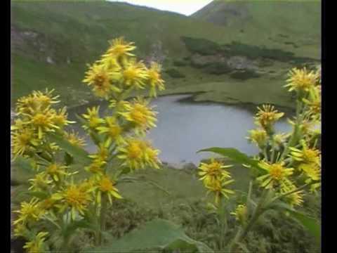 Національний природний парк шацький фото