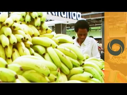 Focus: Bananas - Angola