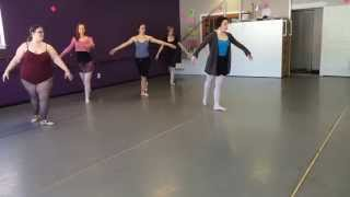 Beginning Adult Ballet Class - Plymouth MI Dance Class - Metro Dance and Music