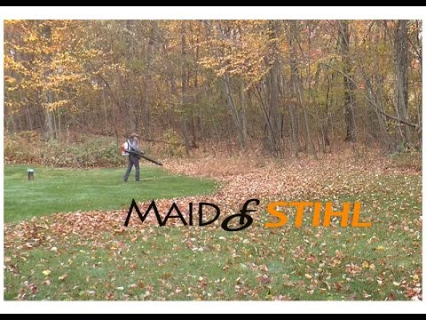 Stihl Leaf Blowers Crescent Avenue Gardens Fort Wayne