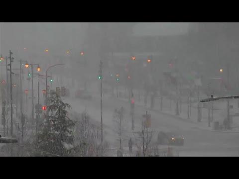 Snow falling in Philadelphia as nor'easter moves through