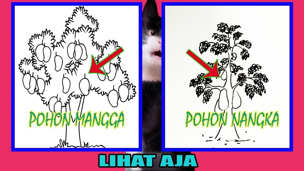 Psikotes Gambar Pohon Lebih Bagus Pohon Mangga Atau Pohon Nangka