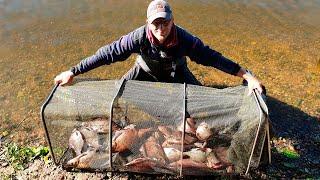 Ловля леща на р.Волга.  Как наловить леща на реке.  Рыбалка 2020