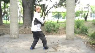 八卦掌・定歩定勢八掌~快速練習~Baguazhang Training