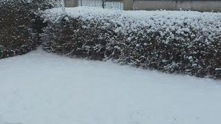 Heaviest snow ive ever seen in Ireland