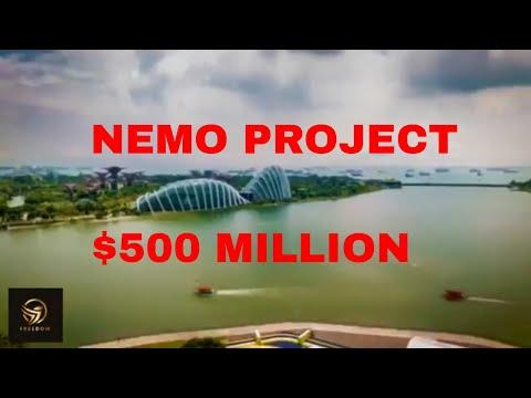NEMO Project Saudi Arabia
