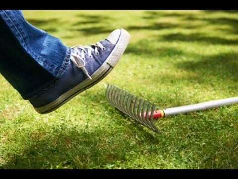 Зеленый налет на языке – причины и лечение зеленого налета