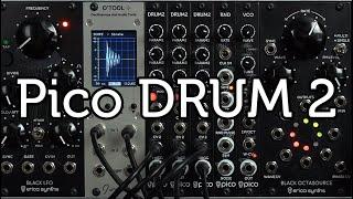 Erica Synths Pico Drum 2 sound demo