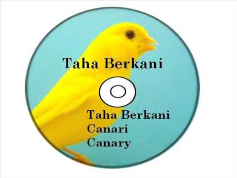 CD COMPLET CANARIS HARZ A TÉLÉCHARGER
