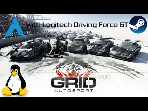 Linux Gaming: Grid Autosport with Logitech Driving Force GT