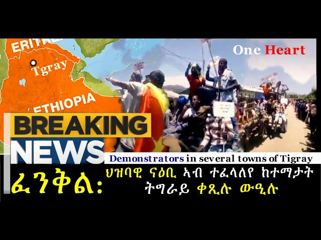 """Fenkil"" movement in Tigray Region"