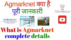 Agmarknet - Agricultural Marketing Information Network - Details - Explained - In Hindi