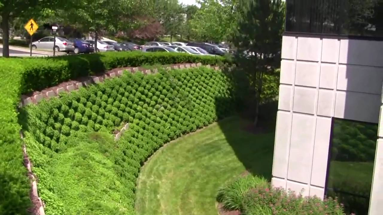 Living Retaining Wall Tour With Pizzo Associates In May