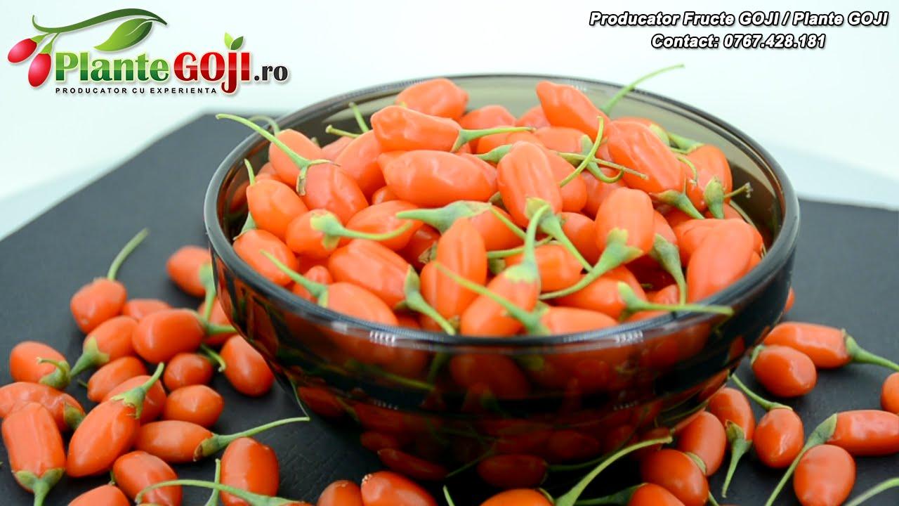 goji fructe de padure beneficiază de pierdere în greutate