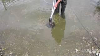 видео Как провести чистку пруда или небольшого водоема своими руками