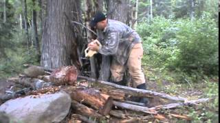 How to set up a Bear Bait and Where and What to Use 2014