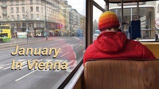 1월 겨울 유럽여행 vlog / Day 16 쇤부른궁전…