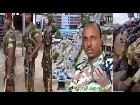 VOA Afaan Oromoo Oduu Hagayya 15,2018