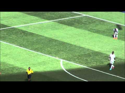 Portugal 2 x 1 Ghana - 26/06/2014 (2nd Gol Portugal)