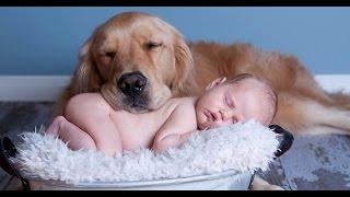 видео Спілкування з малюками