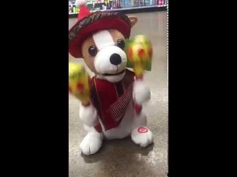 Singing Christmas Chihuahua