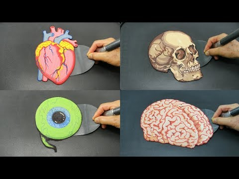 Learn Body Parts With Pancakes Heart Skull Eye And In Amazing Food
