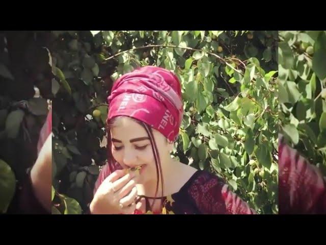 الفنان بشار الزين شفتو يعض بشفتو دوخني ومادوختو/ 2019