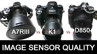 Sony A7riii Vs Pentax K1 Vs Nikon D850 Image Sensor Quality Test - Real World Te