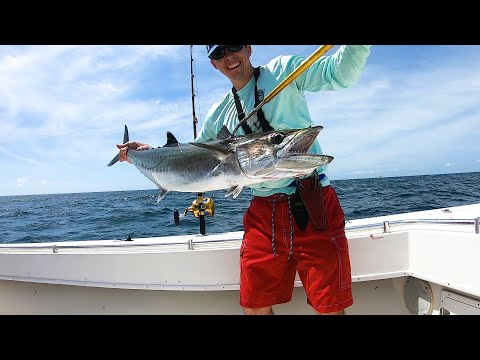How To Catch And Troll Blue Runners (Hardtails) For Kingfish