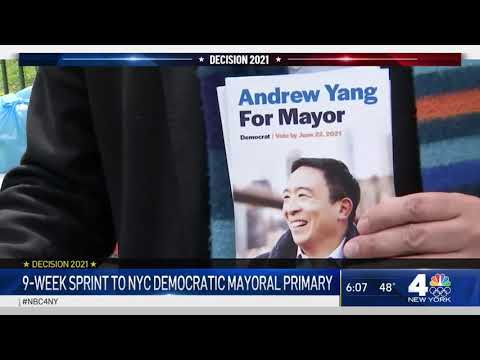 Andrew Yang: With Under 3 Months Until Primary, Campaign Faces Another Misstep | NBC New York