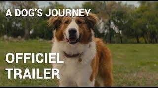 A Dog's Journey | Officiel Trailer