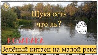 Щука осенью на малой реке вот оно СЧАСТЬЕ И снова Kosadaka