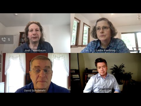 Virtual Panel Discussion: The Path to More Flexible AI