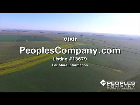 Wright County Farmland Available - Peoples Company Upcoming 145 Acre Land Auction