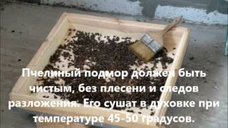 Пчелиный подмор и рецепт настойки