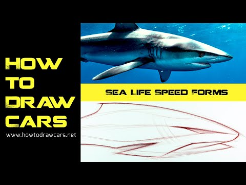 Car Design Drawings | Speed Forms: Sea Life