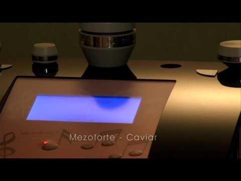 48 Mezoforte   Caviar Spirit HUN