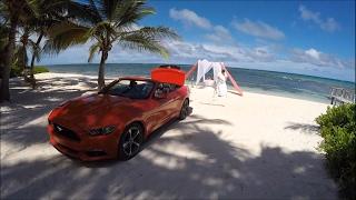 Доминикана 2016, Карибское Море, Свадебная Фотосессия Зимой, Драка Птиц, Завораживающее Фаер шоу