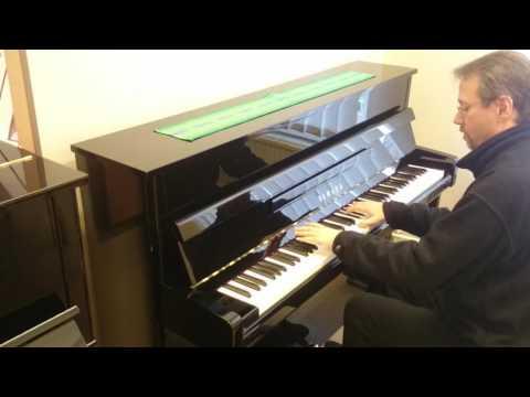 Milonga del Angel - Astor Piazolla (Acoustic version)