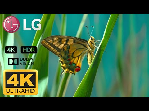 LG 4K DEMO HDR 2018 (60FPS) ELBA