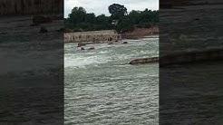 Rajkhat dam