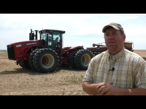 A Thriving Montana Pulse Crop Industry