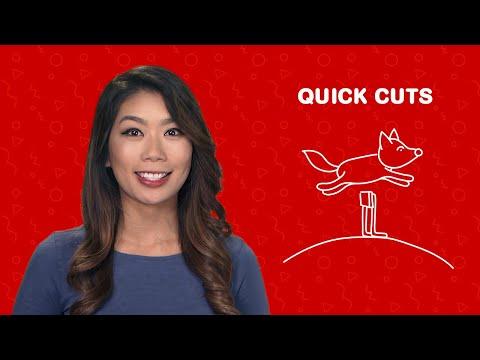 Видео Goldfishka mobile com