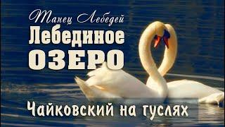 ! Танец маленьких лебедей под ГУСЛИ (По мотивам П. И. Чайковского) Кирилл Богомилов Swan Dance