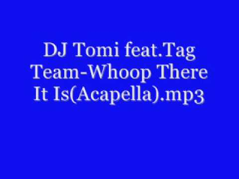 DJ Tomi feat Tag Team- Whoop There It Is (Acapella) mp3