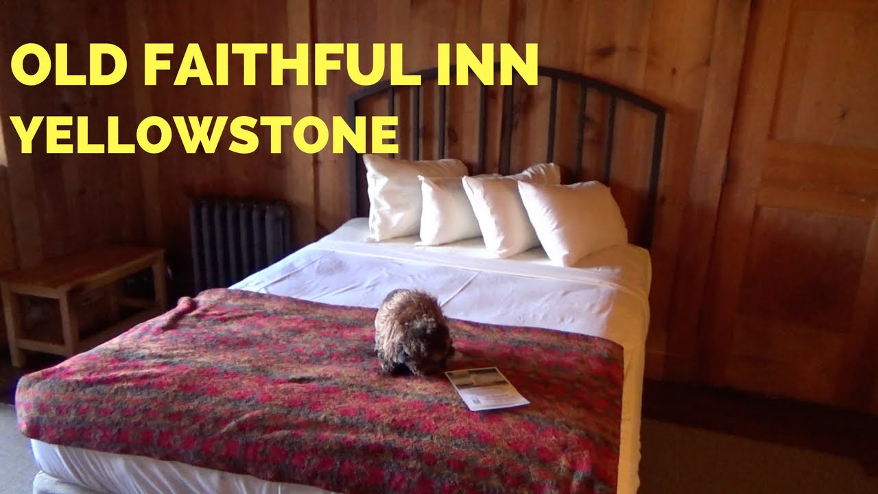 Old Faithful Inn Two Queen Bedroom Yellowstone Youtube