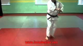 4. Pinan Yondan Wado Ryu
